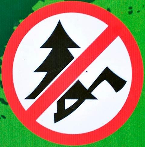 Госкомэкополитики при Главе ДНР напоминает об ответственности за незаконную вырубку хвойных деревьев