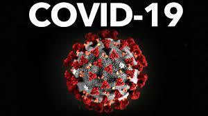 Организация работы по проведению прививок против COVID-19